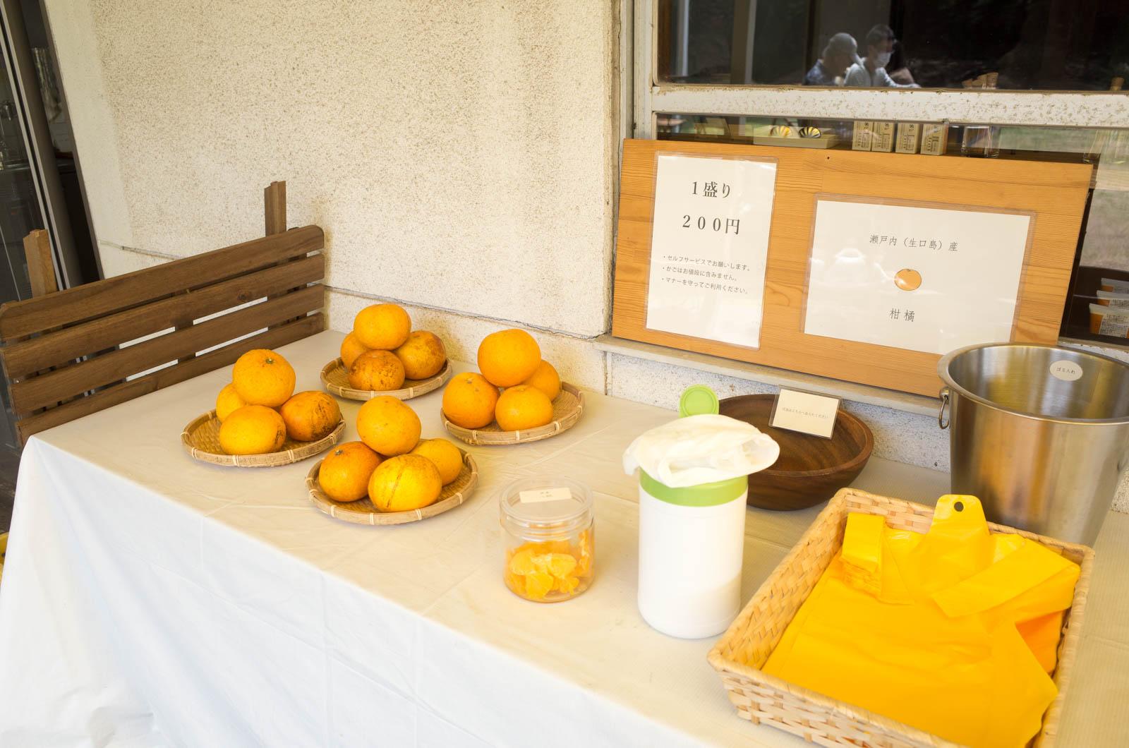 柑橘類売ってた
